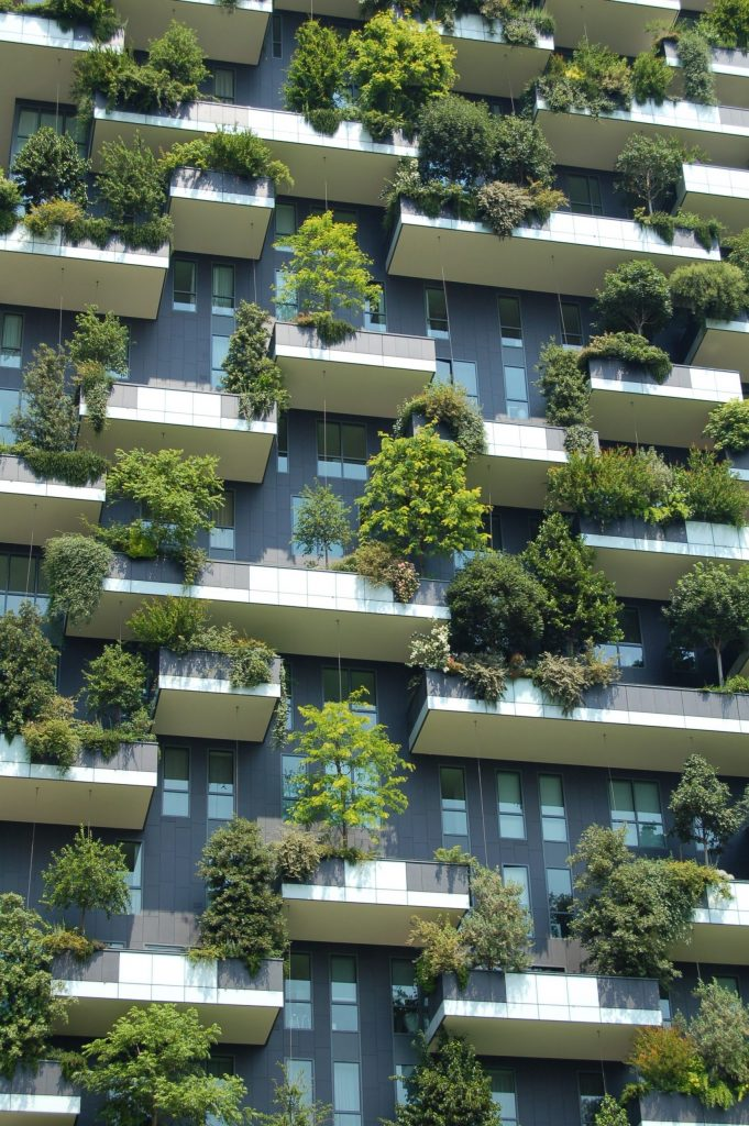 green building net zero