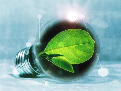 Renewable light bulb
